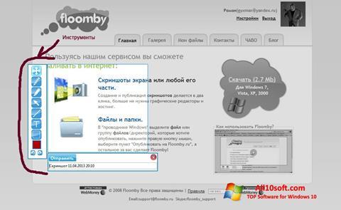Screenshot Floomby Windows 10
